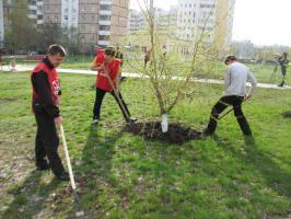 Белгородские комсомольцы провели Ленинский субботник